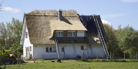rieten dak